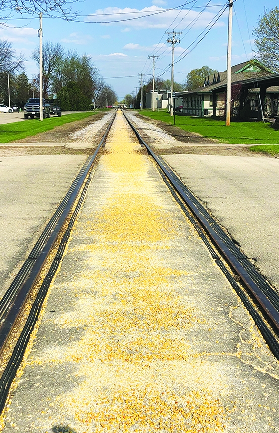 Follow the yellow brick road cornThe railroad tracks through Spring Green, and probably beyond, were covered with corn last week. A grain...