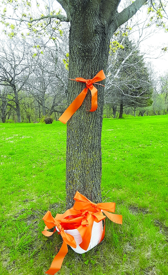 Moms Demand Action will be giving out orange bows at the Spring Green Farmers Market held in front of the Spring Green Community Library on Saturday...